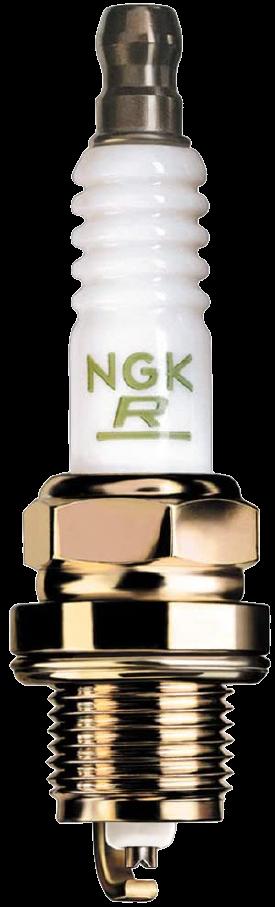 NGK_3951